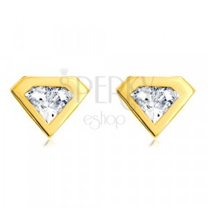 Earrings made of 585 gold - cut zircon with gold rim, diamond motif