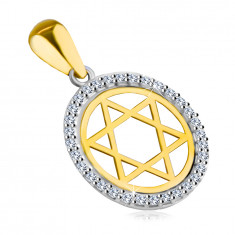 Pendant made of combined 14K gold – Star of David in a circle with a zircon outline